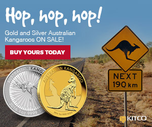 Gold and Silver Kangaroo