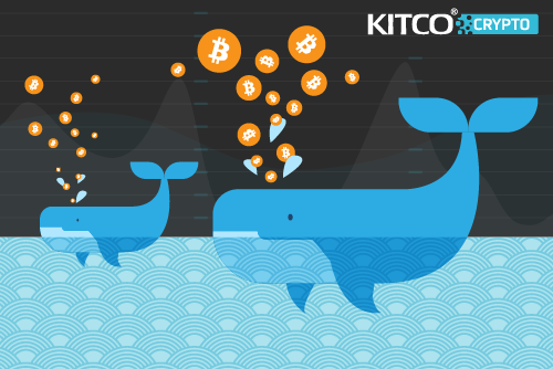 Ten Mysterious Crypto Whales Influence Bitcoin Prices